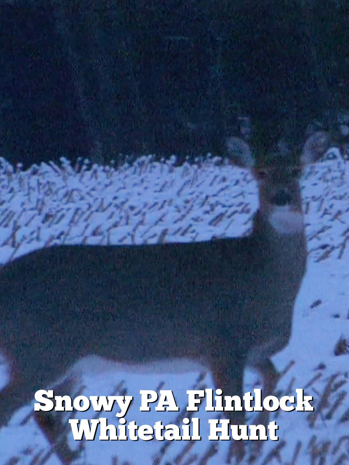 Snowy PA Flintlock Whitetail Hunt