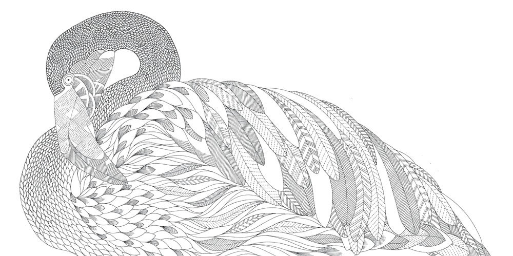 1000 images about Printable colouring sheets on Pinterest