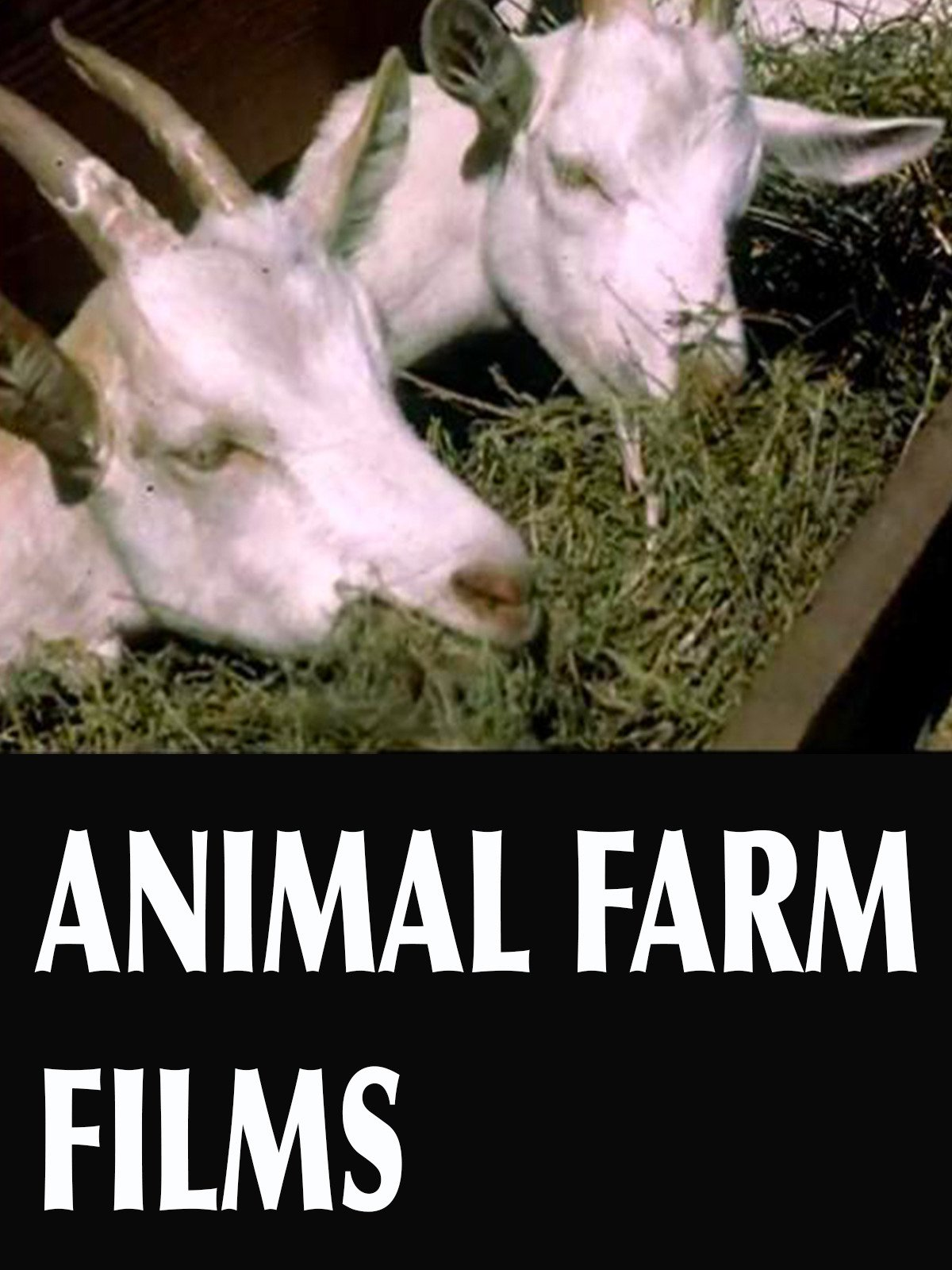 Animal Farm Films