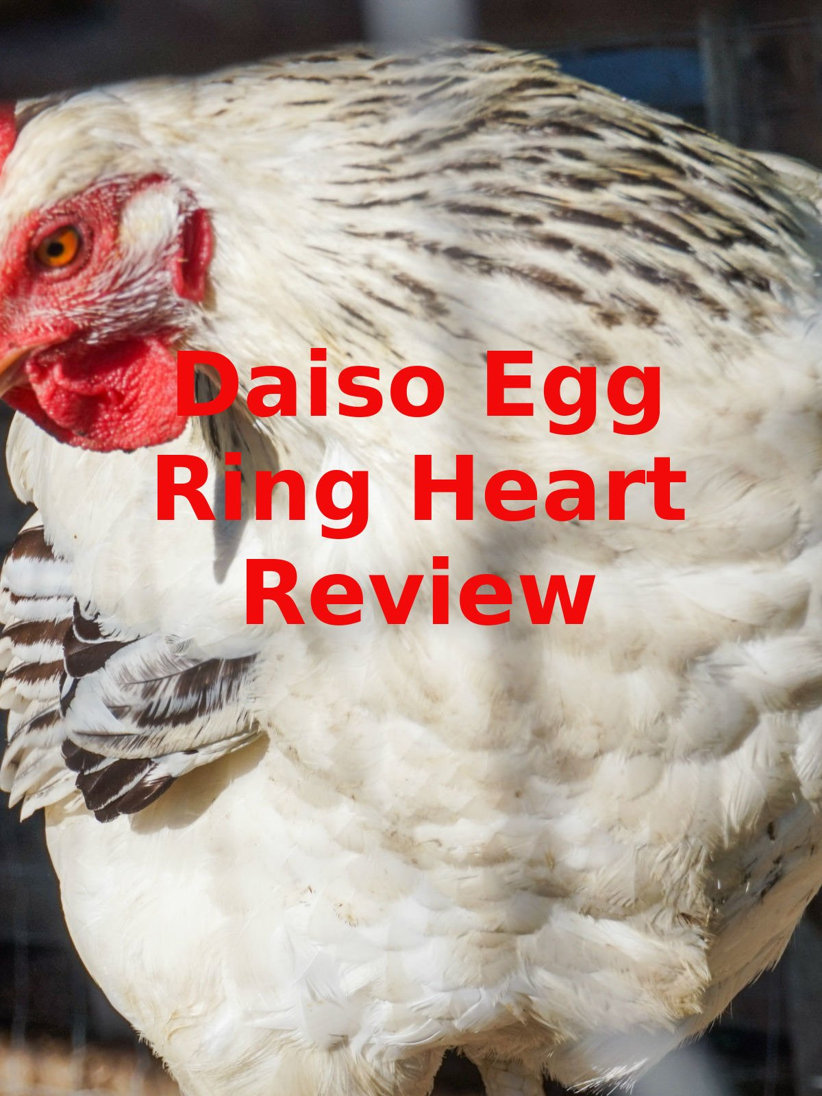 Review: Daiso Egg Ring Heart Review