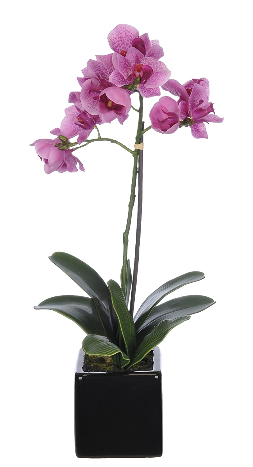 House of Silk Flowers Artificial 17-Inch Phalaenopsis Orchid, Mini, Lavender