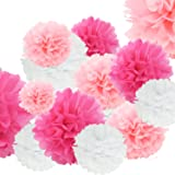Doubletwo DT-Pompom 24pcs Tissue Ceiling Wall 12in 10in 8in Hanging Paper poms Ball Wedding Party Outdoor Decoration Flowers Craft Kit (Pink White), 24 Piece