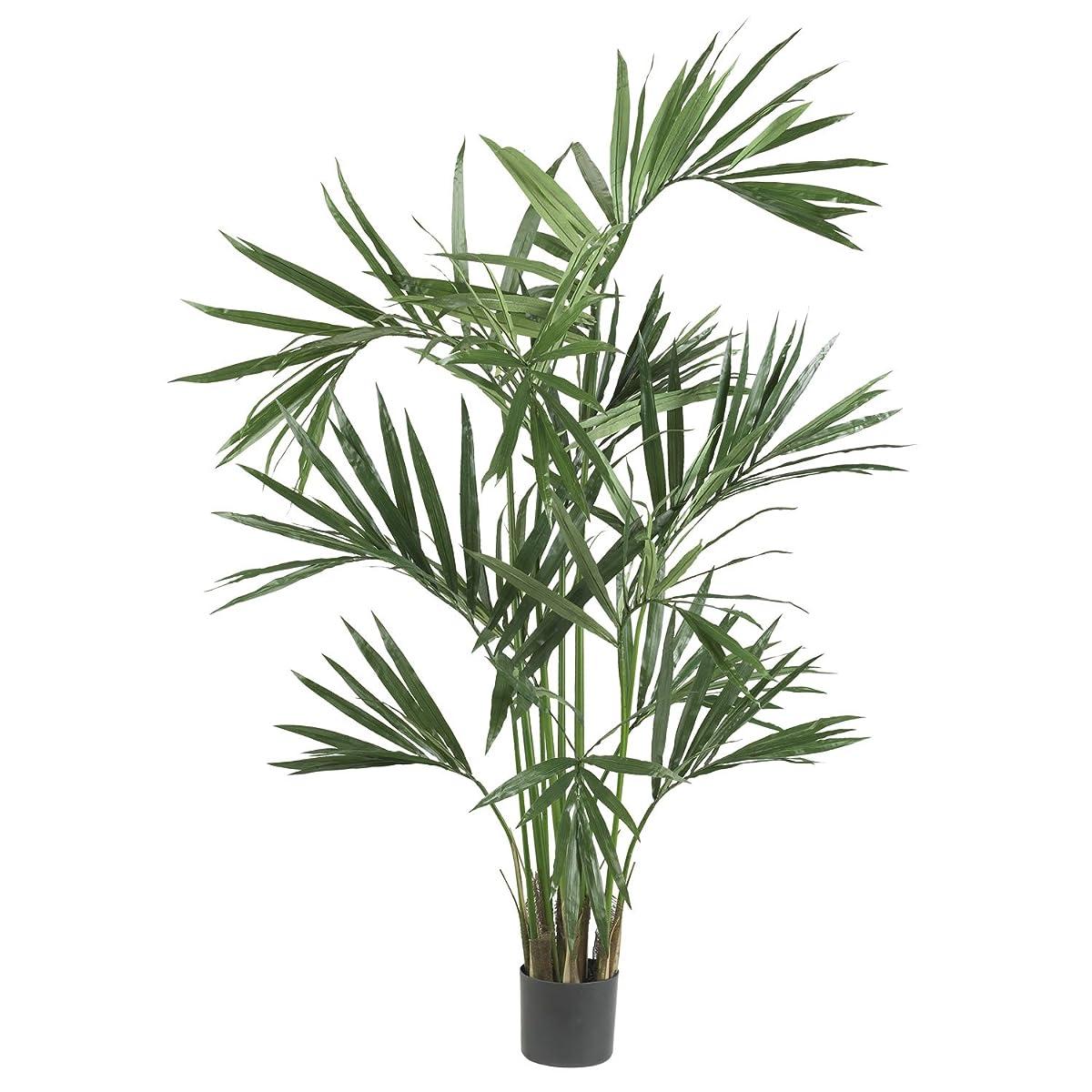 Nearly Natural 5308 Kentia Palm Silk Tree, 6-Feet, Green