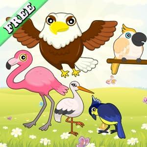 Las aves y juegos para niños y las niñas: descubrir las