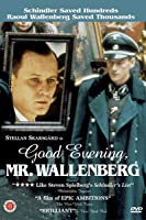 Good Evening, Mr. Wallenberg (English Subtitled)