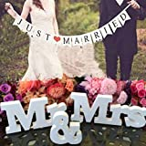 Buytra Wedding Decorations Set with Just Married Wedding Banner Mr Mrs Signs Letters for Sweetheart Table (Style1) (Color: Style1)