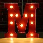SOLMORE 23CM x 5.5CM LED Letter Light DIY Vintage Metal Sign Carnival Wall Marquee Lights Decoration M