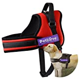 PetLove Dog Harness, Soft Leash Padded No Pull Dog Harness with All Kinds of Size - Red, XL Large (Color: Red, Tamaño: XLarge)