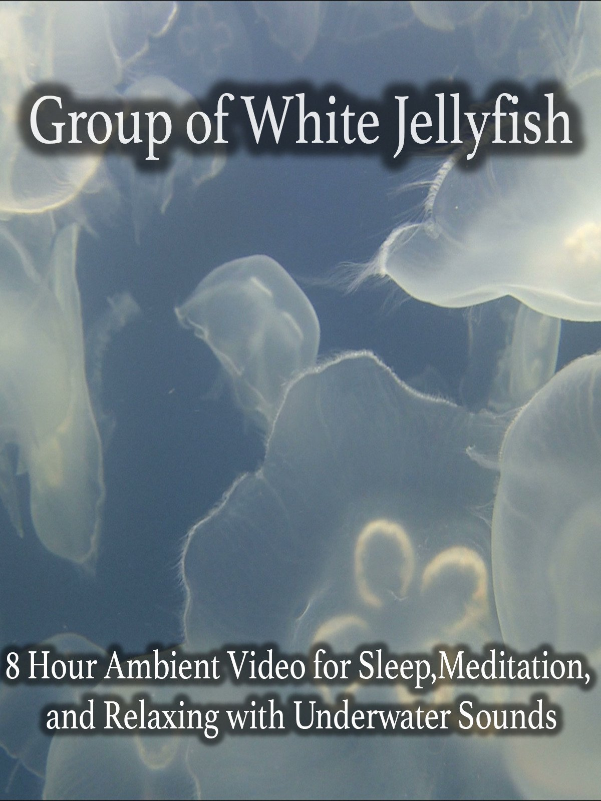 Group of White Jellyfish 8 Hour Ambient Video for Sleep, Meditation, and Relaxing with Underwater Sounds on Amazon Prime Instant Video UK