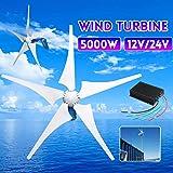 TQ 5000W Wind Generator 12V/24V 5 Wind Blades Wind-Power Electricity Generator with Controller Wind Turbine Blade,24v (Color: 24V)