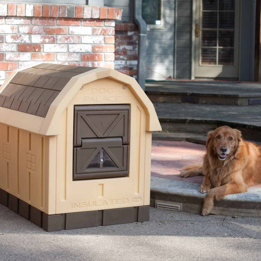 Best winter dog houses dogvills for Insulated dog houses for winter