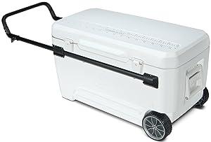 Rolling Cooler