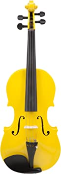 Le Var 4/4 Student Violin Outfit