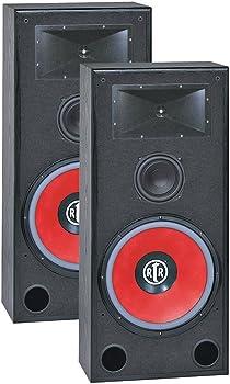 Bic America Eviction Bi-Ampable Floor Speaker