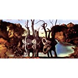 Salvador Dali Swans Reflecting Elephants Fine Surrealist Art Decorative Print (Unframed 12x24 Poster)