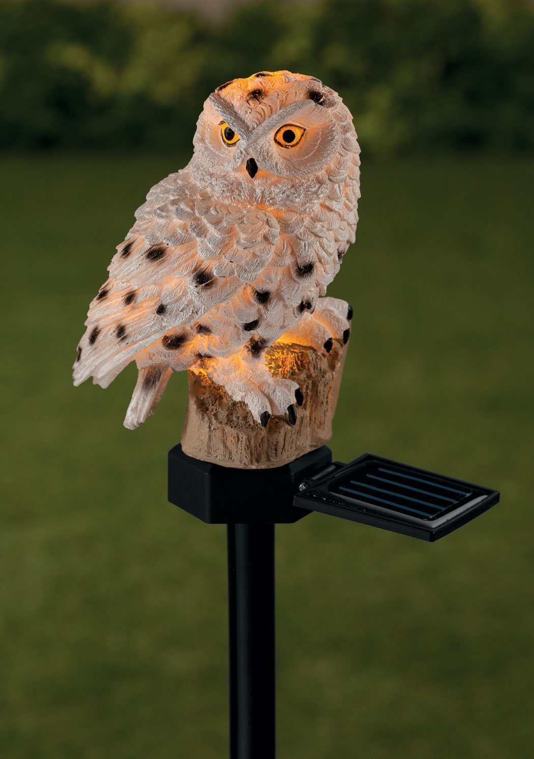 Owl Solar Powered Light