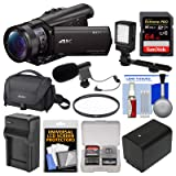 Sony Handycam FDR-AX100 Wi-Fi 4K HD Video Camera Camcorder with 64GB Card + Case + LED Light + Battery & Charger + Mic + Filter + Kit (Color: Black)