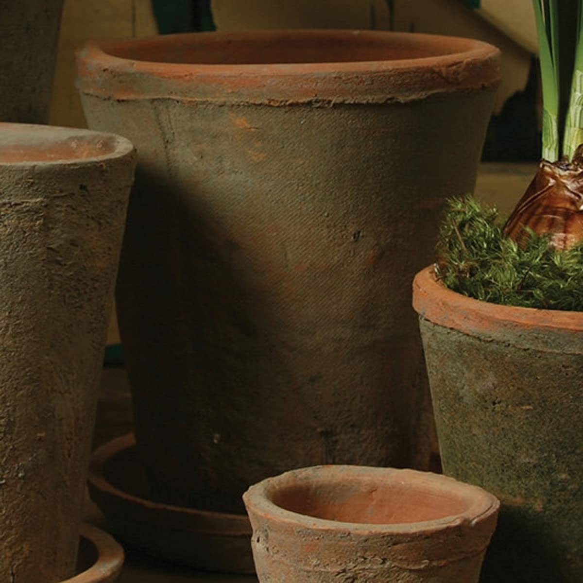 Rustic Terra Cotta Rose Pot