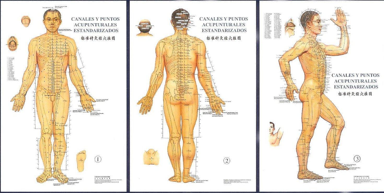 Como es terrible la hernia intervertebral