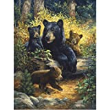 DMC Thread 14CT Counted Cross Stitch Kits Cute Bears Family Handmade Embroidery Pattern Needlecraft Room Decor (Cute Bears Family) (Color: Cute bears family)