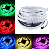 CHINLY 16.4ft WS2812B Individually Addressable LED Strip Light 5050 RGB SMD 300 Pixels Dream Color Waterproof IP67 White PCB 5V DC (Color: RGB (Red, Green, Blue), Tamaño: White PCB 16.4ft 300leds waterproof)