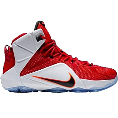 lebron james shoes 14