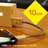 cheero DANBOARD 2in1 USB Cable with Micro USB & Lightning connector 10cm