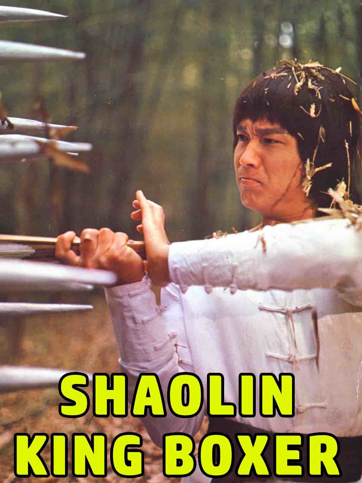 Shaolin King Boxer