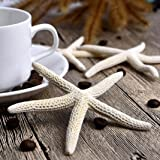 DEESEE(TM) New1 Piece 10-12cm White Natural Finger Sea Star Wedding Decor (Color: White, Tamaño: 10-12cm)
