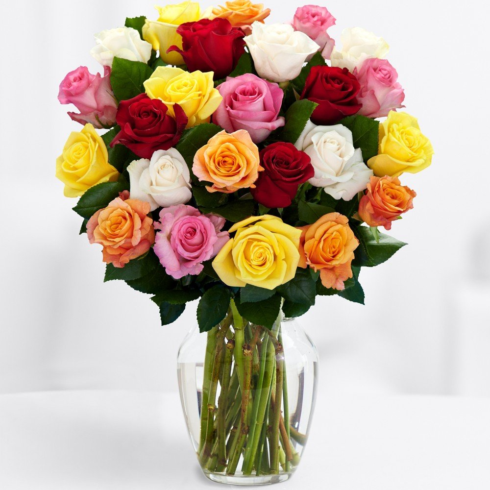 ProFlowers - Free Shipping - Two Dozen Long Stemmed Rainbow Roses (with FREE glass vase) - Flowers
