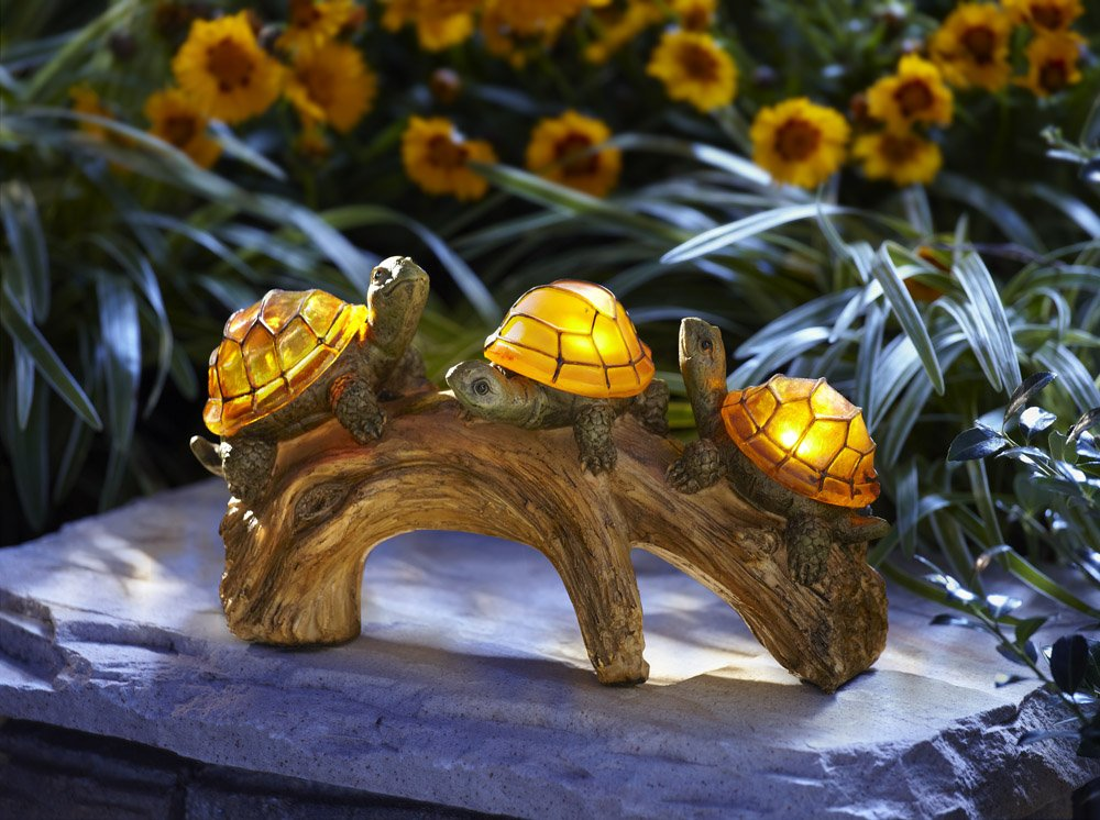 Super Cute Gift Ideas for Turtle Lovers! - Gift Canyon - photo#39