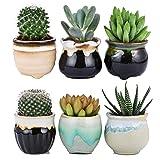 Flowing Glaze Ceramic Succulent Plant Pot 6pcs 2.5 inch Cactus Flower Plant Pot Container Planter Black&White Base Serial Set