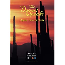 The Desert Speaks #710: Agave: Thorn of Plenty