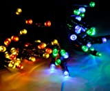 Lycheers colour Solar Christmas String 55ft 17m 100 LED Solar Fairy String Lights for Outdoor, Gardens, Homes, Christmas Party, Waterproof (Multicolor)