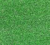 ホームグリーンワールド (HOMEGREENWOLRD) ロールタイプ人口芝 芝丈6mm (6(1m*6m)) [並行輸入品]
