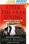 After the Arab Spring: How Islamists...
