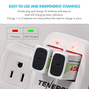 Tenergy TN141 2 Bay 9V Smart Charger with 4 pcs Centura Low Self-discharge 9V NiMH Rechargeable Batteries