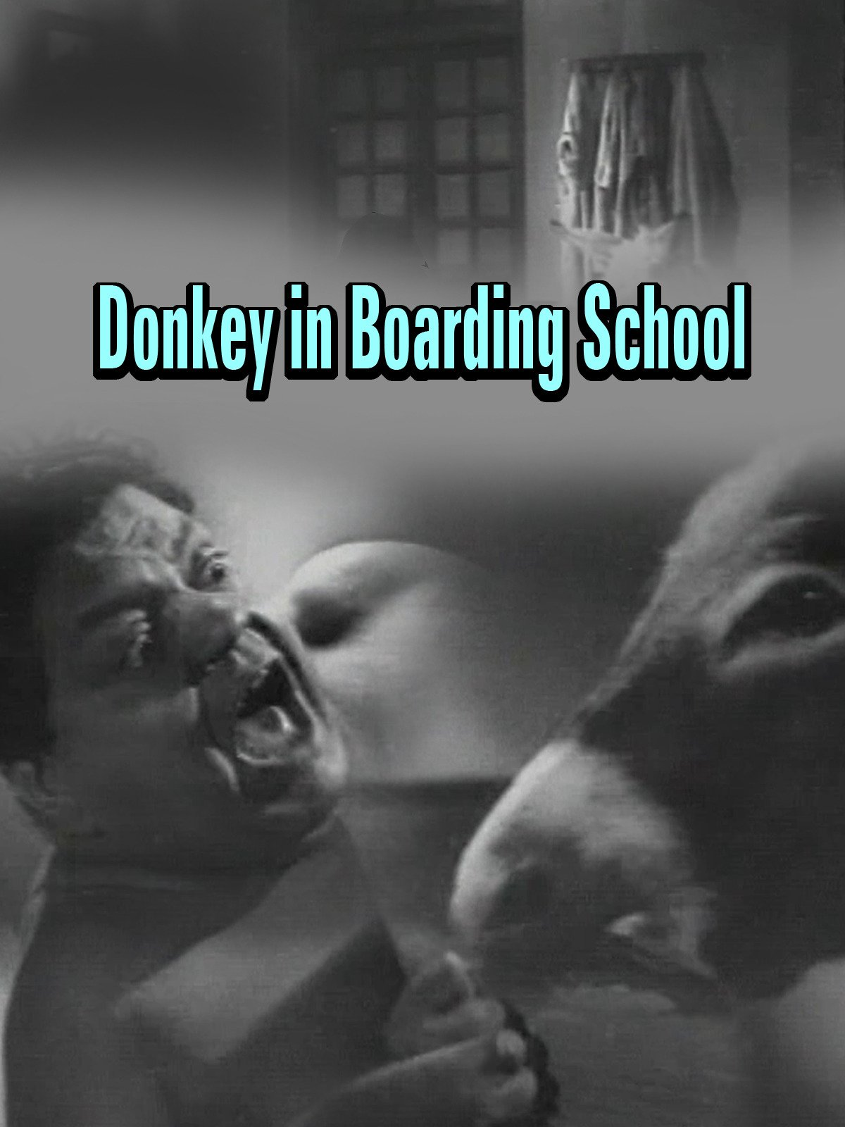 Clip: Donkey in Boarding School