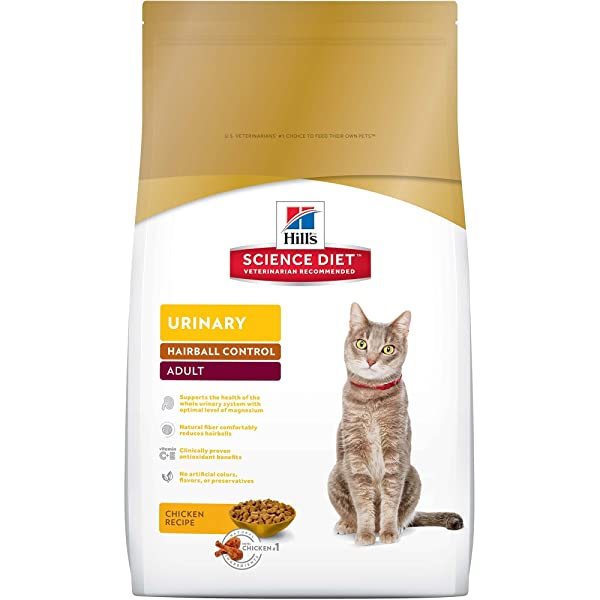 Best Quality Affordable Wet Cat Food
