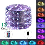 LEGELITE RGB 13Color LED Fairy Light with USB, RF Control LED String Lights 33ft 100 Led for Bedroom, Patio, Garden, Gate, Yard, Parties, Wedding Decoration (13 Color No Battery Case) (Color: 13 Color No Battery Case)