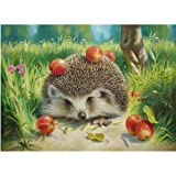 DMC Thread 14CT Counted Cross Stitch Kits Cute Hedgehog and Apples Handmade Embroidery Pattern Needlecraft Room Decor (Cute Hedgehog and Apples) (Color: Cute hedgehog and apples)