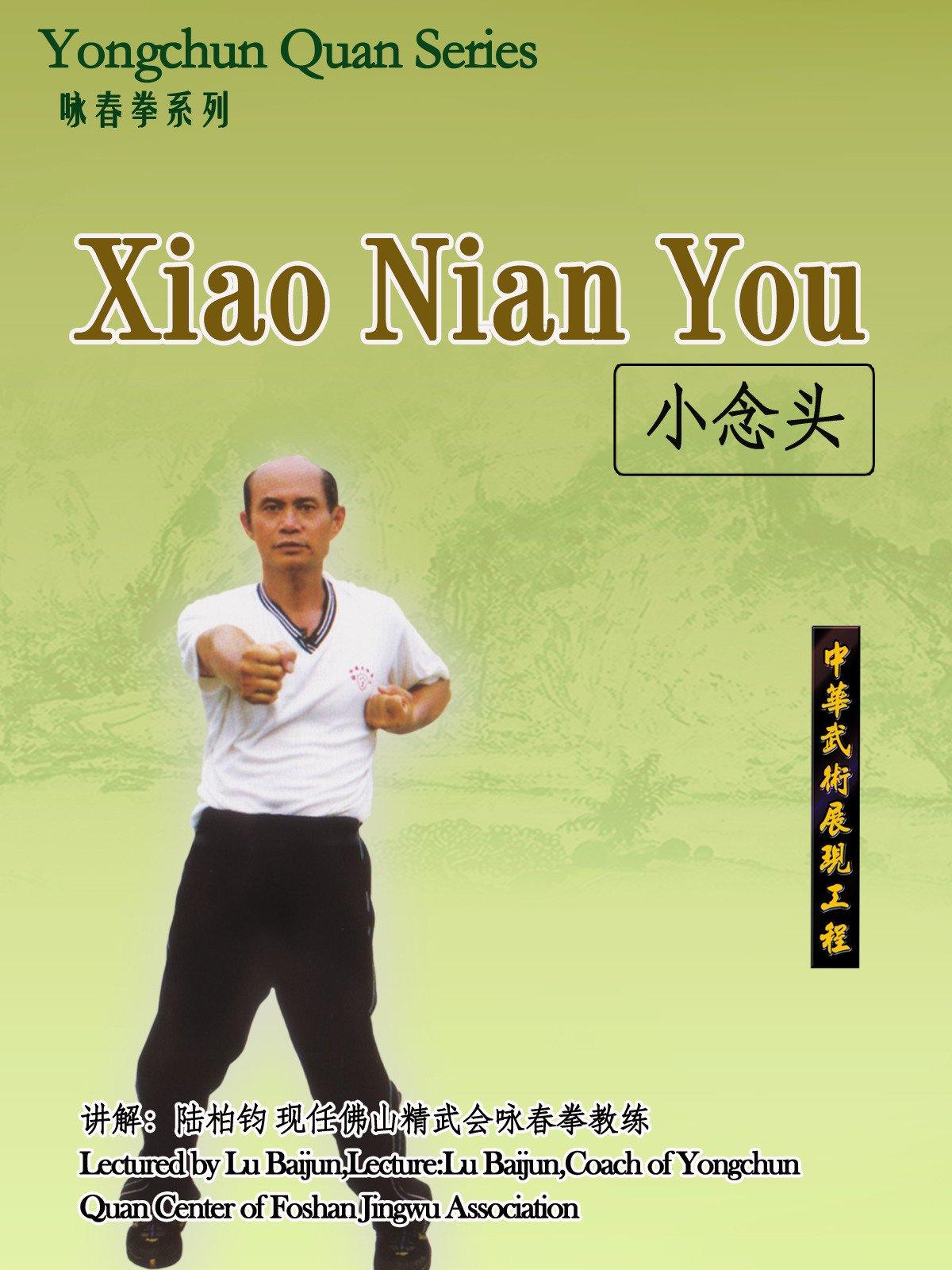 Yongchun Quan Series-Xiao Nian Tou (Lectured by Lu Baijun)