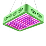 Roleadro LED Grow Light, Reflector-Series 300W Compound Full Spectrum Grow Lamp with Double Chips and Daisy Chain for Hydroponic Indoor Plants Veg and Flower Growth, Flowering, Fruiting (Color: Green, Tamaño: Double chips 300W)