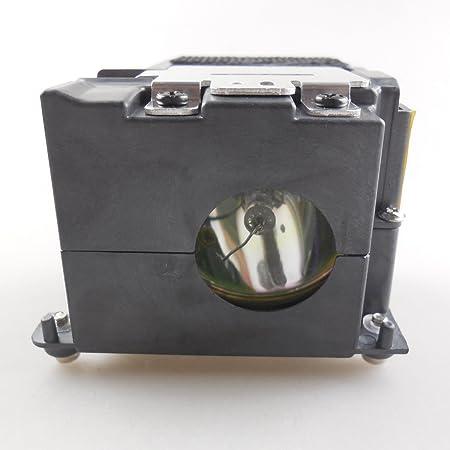 haiwo LT51LP de haute qualité Ampoule de projecteur de remplacement compatible avec boîtier pour LT75Z/LT150z.