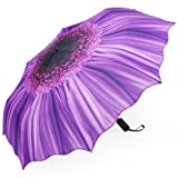 Plemo Automatic Umbrellas, Windproof Purple Daisy Design Compact Folding Umbrellas with Anti-Slip Rubberized Grip, for Travel or Gifts