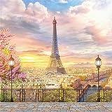 AOFOTO 10x10ft Eiffel Tower Backdrop Paris Landscape City Architecture Balcony Overlook Streetscape Photography Background Terrace Fancy Aerial Veranda Wedding Girl Bride Newlyweds Photo Studio Props (Color: WED-A8, Tamaño: 10x10ft)