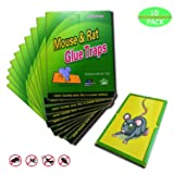 Garsum 10 Pack/Mouse Glue Boards,Sticky Traps for Mice,Large Rat Glue Pads,Extra Sticky Traps with Peanut Butter Large Capture Area,Catch Mouse Indoor and Outdoor (Color: Green)