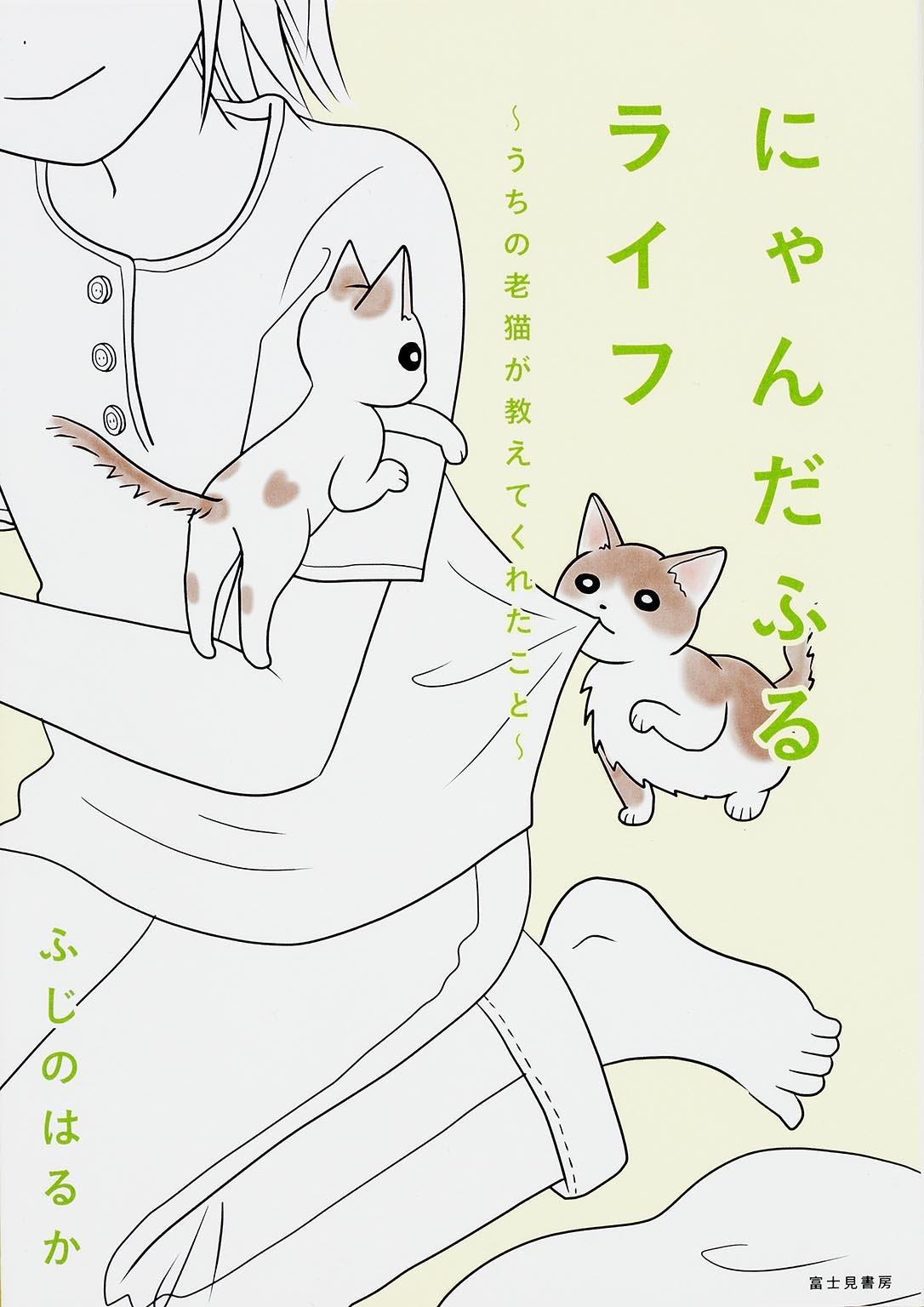 にゃんだふるライフ ~うちの老猫が教えてくれたこと~