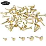 1000 Pieces Mini Brads Paper Fasteners Steel Brad Fasteners for Scrapbooking/DIY Paper Crafts, 5 Different Sizes