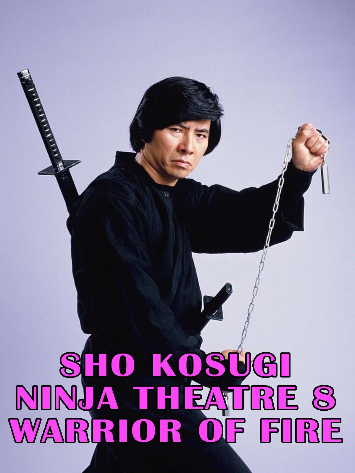 Sho Kosugi Ninja Theater Vol.8 Warrior On Fire on Amazon Prime Video UK